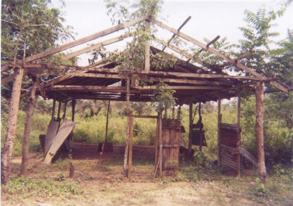 Uncompleted Church Project in the Jungle